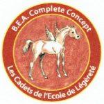 B.E.A. Complete Concept